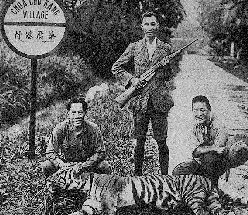 Hunters and their tigers
